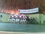 bojcinskasuma2012_06