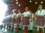 bojcinskasuma2012_08